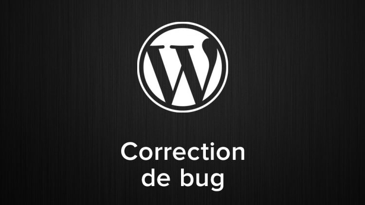 correction de bug wordpress
