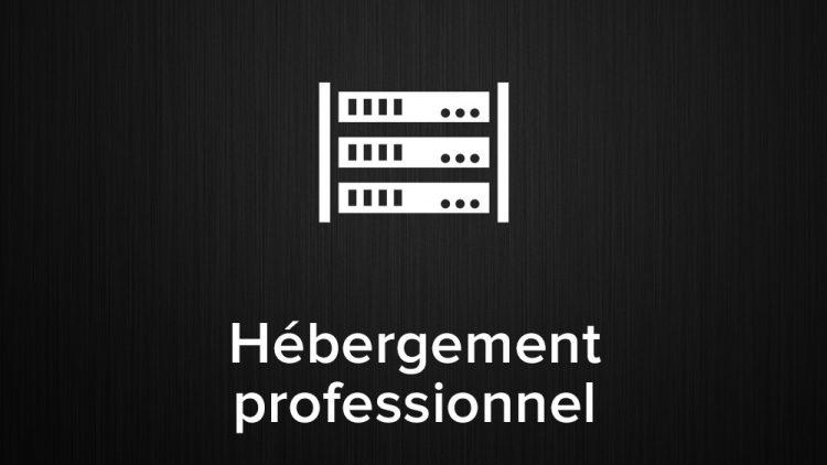 hébergement professionnel wordpress
